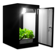 7-grow-box-angle-view-plants