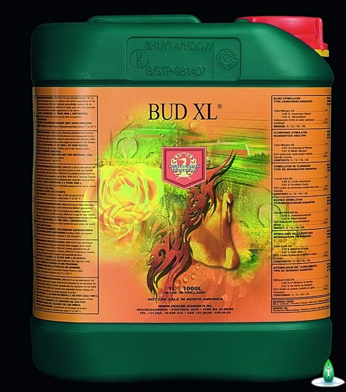 House and Garden - Bud xl